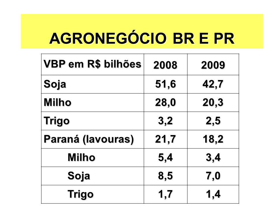 AGRONEGÓCIO BR E PR VBP em R$ bilhões 20082009 Soja51,642,7 Milho28,020,3 Trigo3,22,5 Paraná (lavouras) 21,718,2 Milho Milho5,43,4 Soja Soja8,57,0 Tri