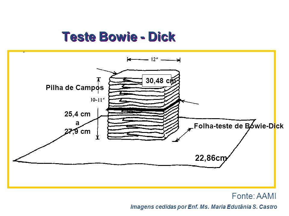 Teste Bowie - Dick 30,48 cm Folha-teste de Bowie-Dick 25,4 cm a 27,9 cm Pilha de Campos 22,86cm Fonte: AAMI Imagens cedidas por Enf. Ms. Maria Edutâni