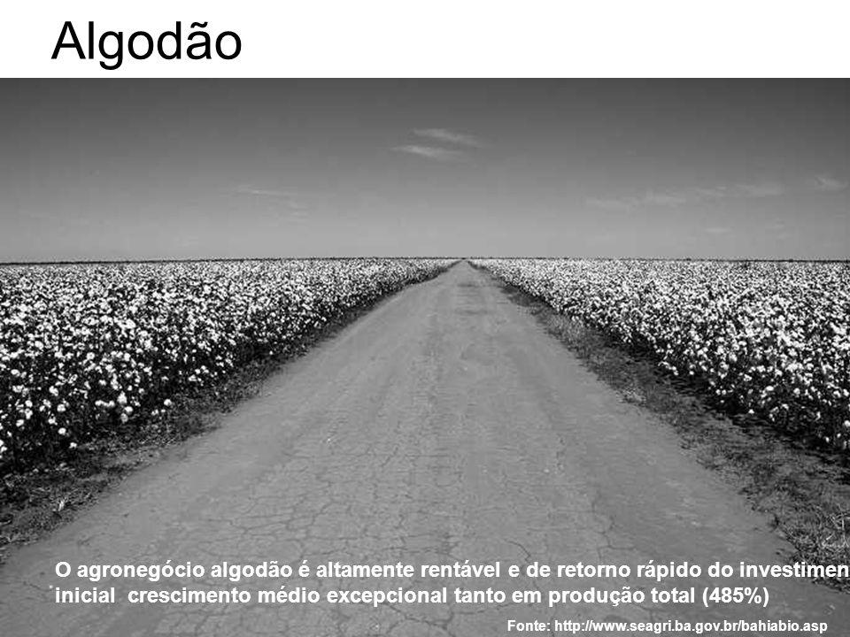 Algodão O agronegócio algodão é altamente rentável e de retorno rápido do investimento inicial crescimento médio excepcional tanto em produção total (