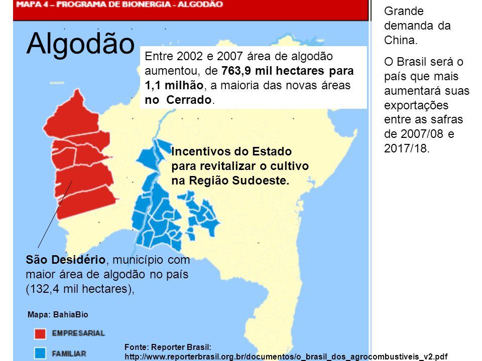 Algodão Mapa: BahiaBio Incentivos do Estado para revitalizar o cultivo na Região Sudoeste. Grande demanda da China. O Brasil será o país que mais aume