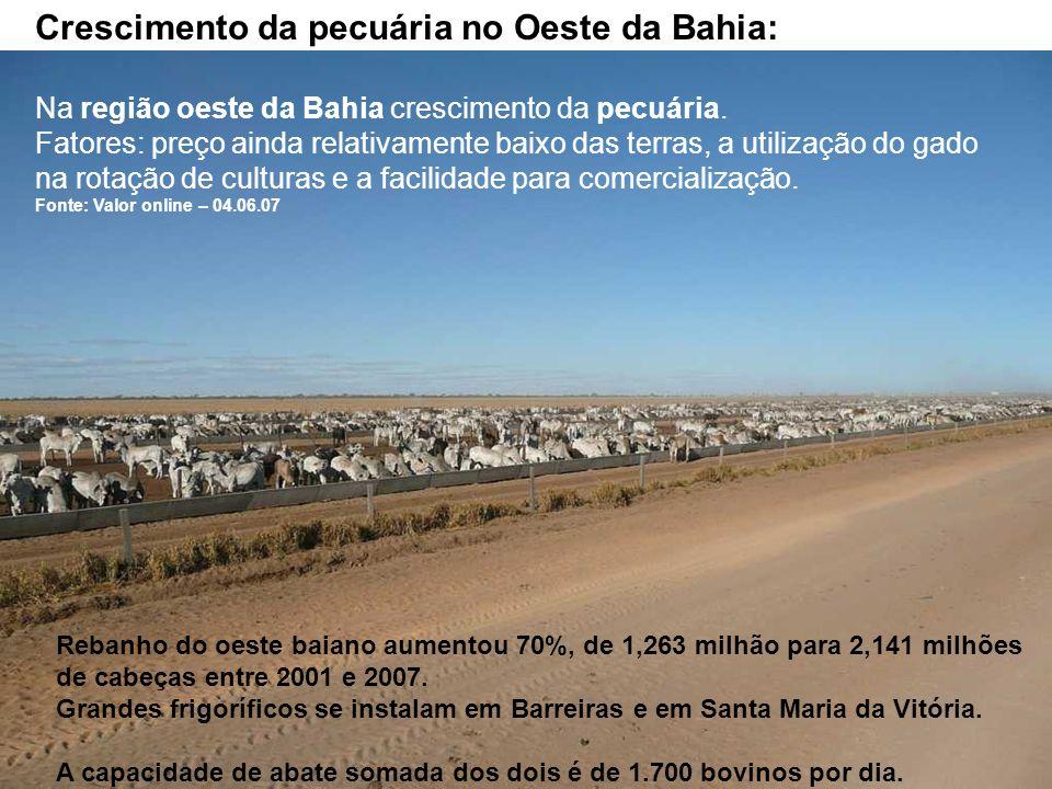 Crescimento da pecuária no Oeste da Bahia: Na região oeste da Bahia crescimento da pecuária. Fatores: preço ainda relativamente baixo das terras, a ut