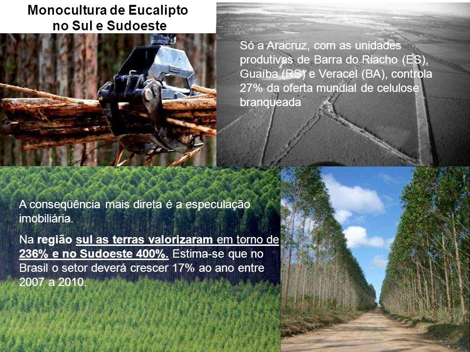 Monocultura de Eucalipto no Sul e Sudoeste A conseqüência mais direta é a especulação imobiliária. Na região sul as terras valorizaram em torno de 236