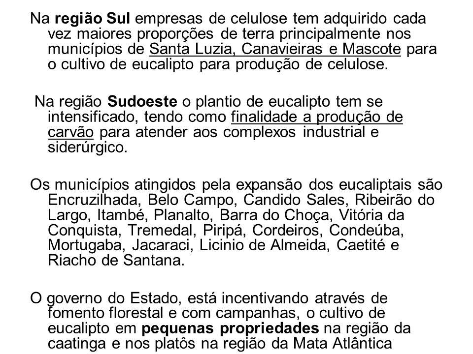 Na região Sul empresas de celulose tem adquirido cada vez maiores proporções de terra principalmente nos municípios de Santa Luzia, Canavieiras e Masc