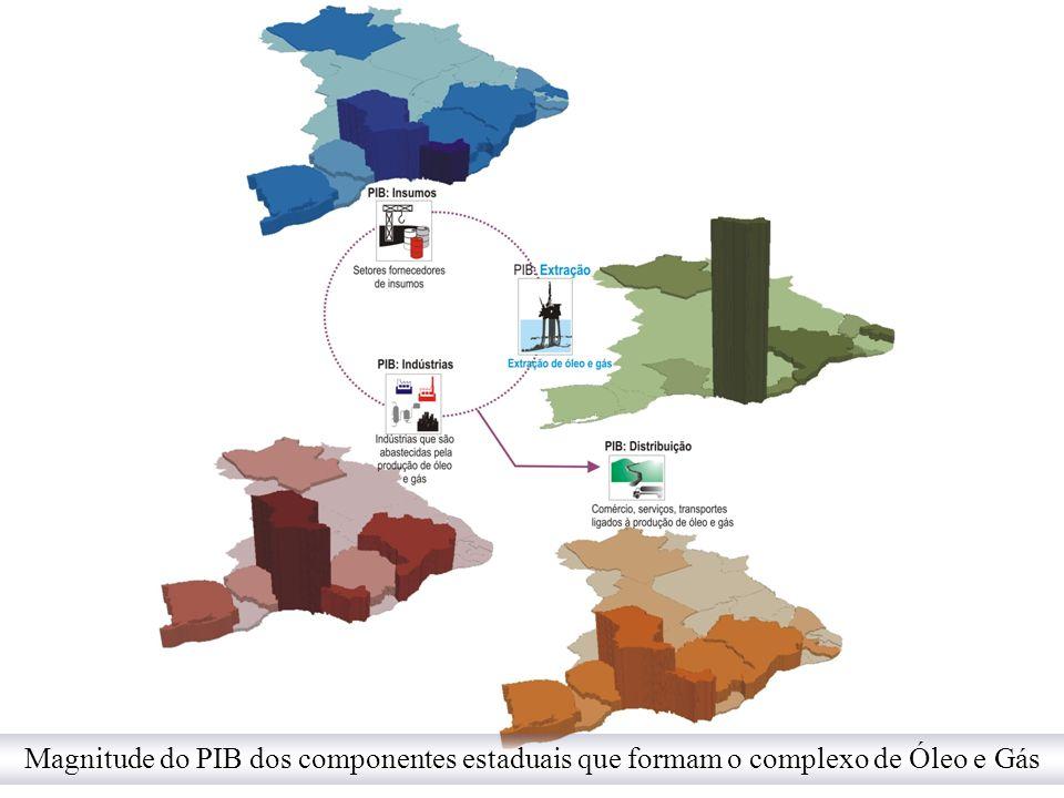 Magnitude do PIB dos componentes estaduais que formam o complexo de Óleo e Gás