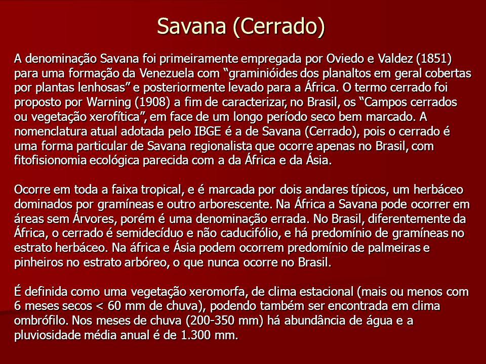 Savana (Cerrado) A denominação Savana foi primeiramente empregada por Oviedo e Valdez (1851) para uma formação da Venezuela com graminióides dos plana