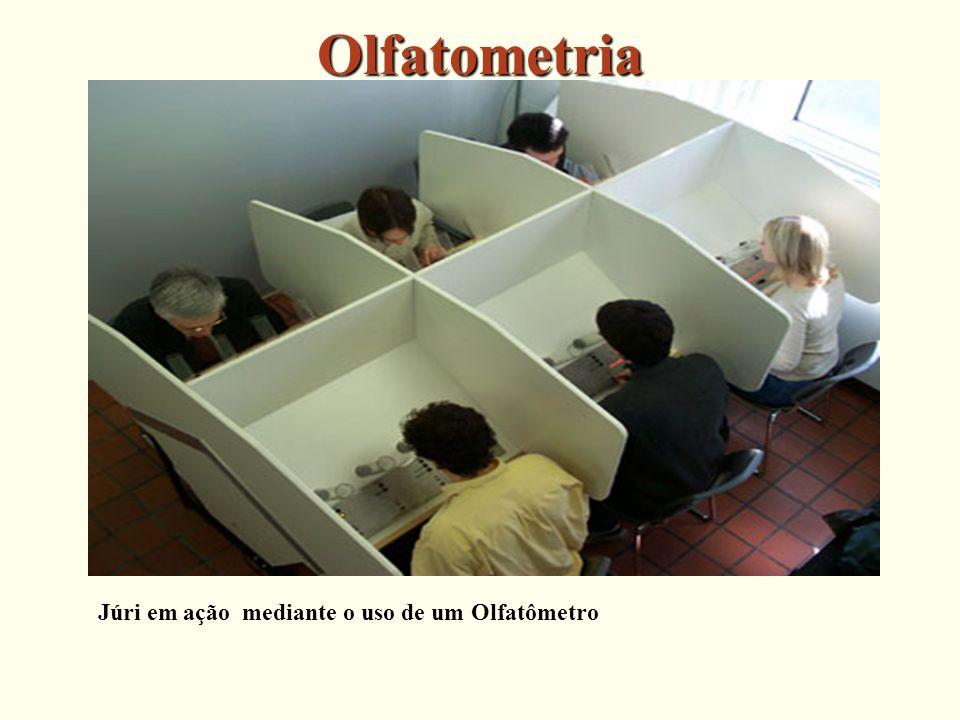 Olfatometria Júri em ação mediante o uso de um Olfatômetro