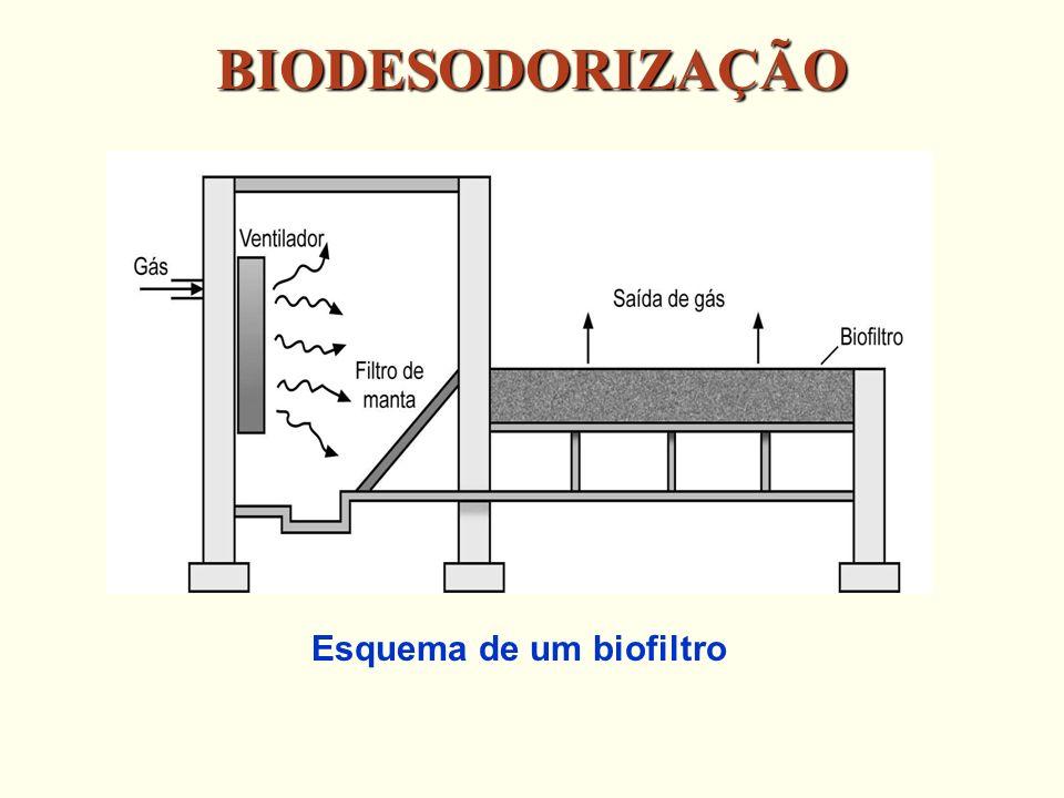 BIODESODORIZAÇÃO Esquema de um biofiltro