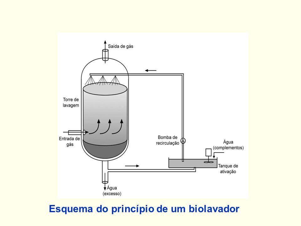 Esquema do princípio de um biolavador