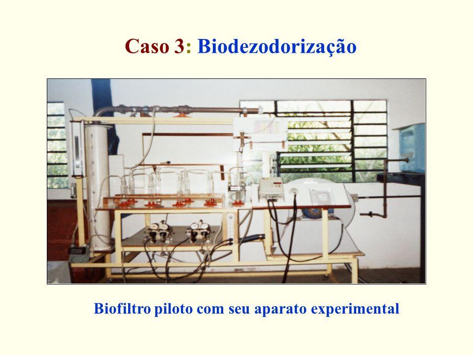 Caso 3: Biodezodorização Biofiltro piloto com seu aparato experimental