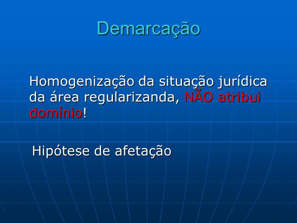 Demarcação Homogenização da situação jurídica da área regularizanda, NÃO atribui domínio! Hipótese de afetação Hipótese de afetação