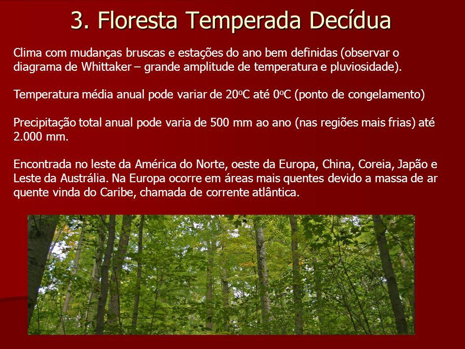 3. Floresta Temperada Decídua Clima com mudanças bruscas e estações do ano bem definidas (observar o diagrama de Whittaker – grande amplitude de tempe