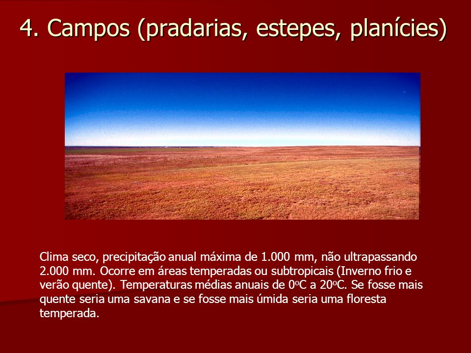 4. Campos (pradarias, estepes, planícies) Clima seco, precipitação anual máxima de 1.000 mm, não ultrapassando 2.000 mm. Ocorre em áreas temperadas ou