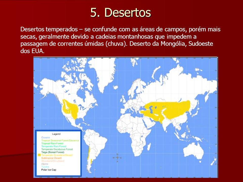 5. Desertos Desertos temperados – se confunde com as áreas de campos, porém mais secas, geralmente devido a cadeias montanhosas que impedem a passagem