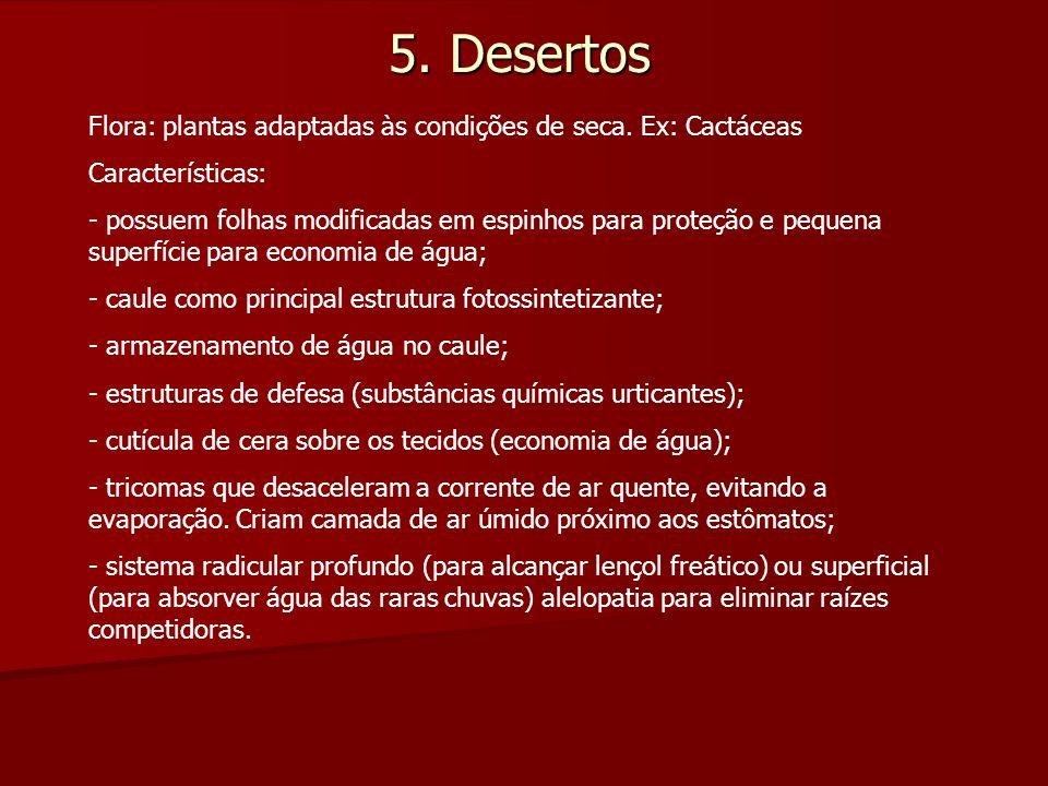 5. Desertos Flora: plantas adaptadas às condições de seca. Ex: Cactáceas Características: - possuem folhas modificadas em espinhos para proteção e peq