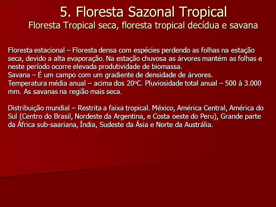 5. Floresta Sazonal Tropical Floresta Tropical seca, floresta tropical decídua e savana Floresta estacional – Floresta densa com espécies perdendo as