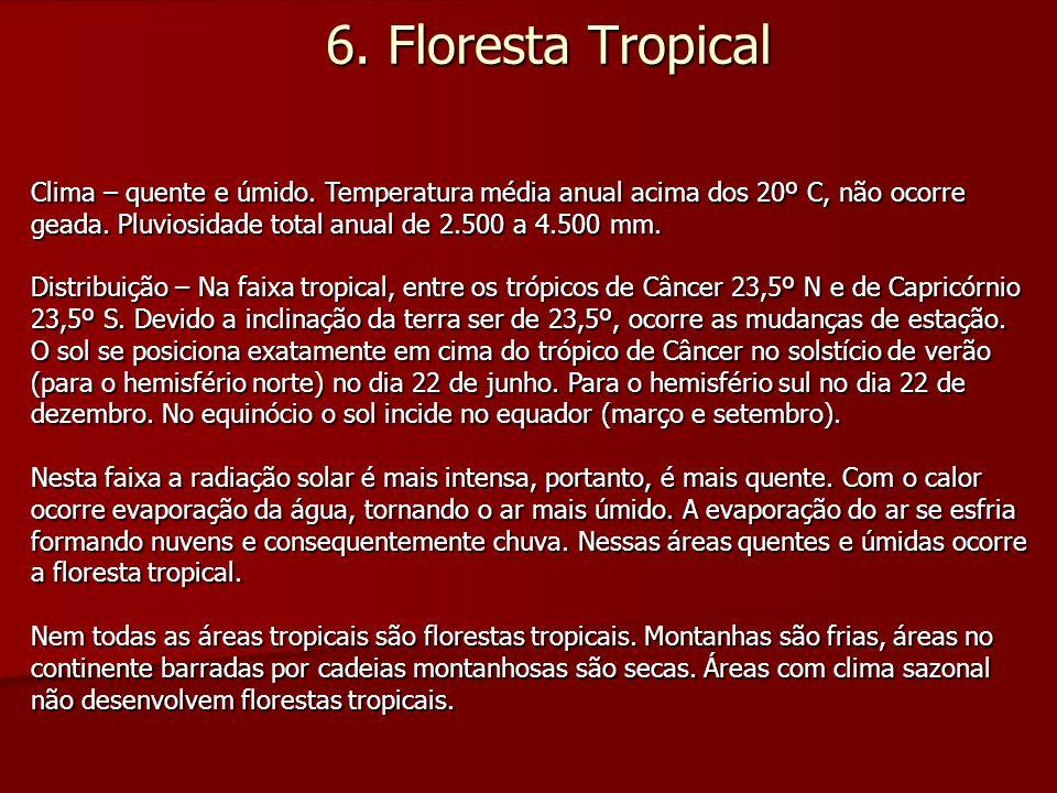 6. Floresta Tropical Clima – quente e úmido. Temperatura média anual acima dos 20º C, não ocorre geada. Pluviosidade total anual de 2.500 a 4.500 mm.