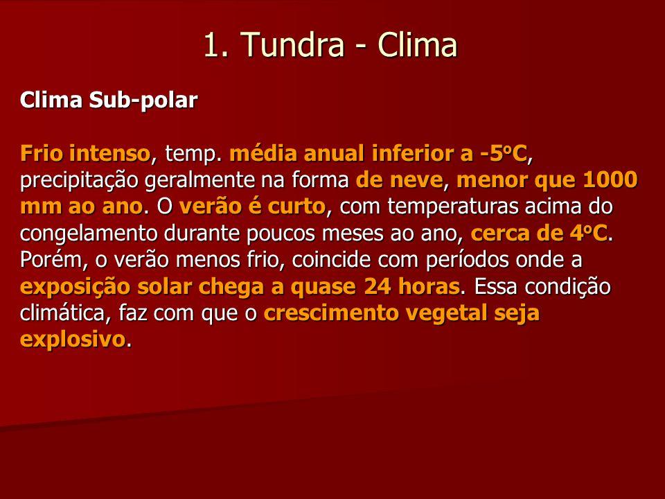 1. Tundra - Clima Clima Sub-polar Frio intenso, temp. média anual inferior a -5 o C, precipitação geralmente na forma de neve, menor que 1000 mm ao an