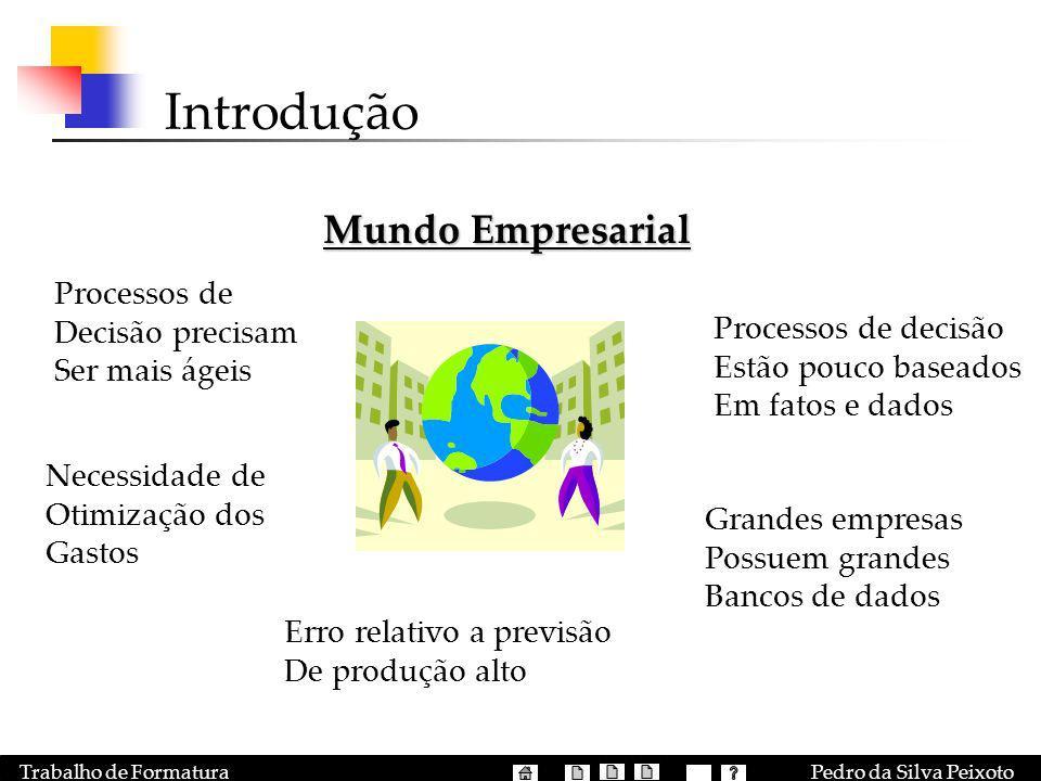 Pedro da Silva PeixotoTrabalho de Formatura Introdução Mundo Empresarial Processos de Decisão precisam Ser mais ágeis Processos de decisão Estão pouco
