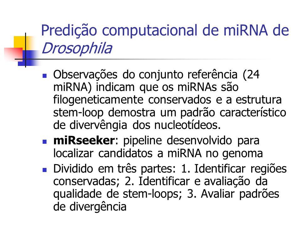 Predição computacional de miRNA de Drosophila Observações do conjunto referência (24 miRNA) indicam que os miRNAs são filogeneticamente conservados e a estrutura stem-loop demostra um padrão característico de divervêngia dos nucleotídeos.