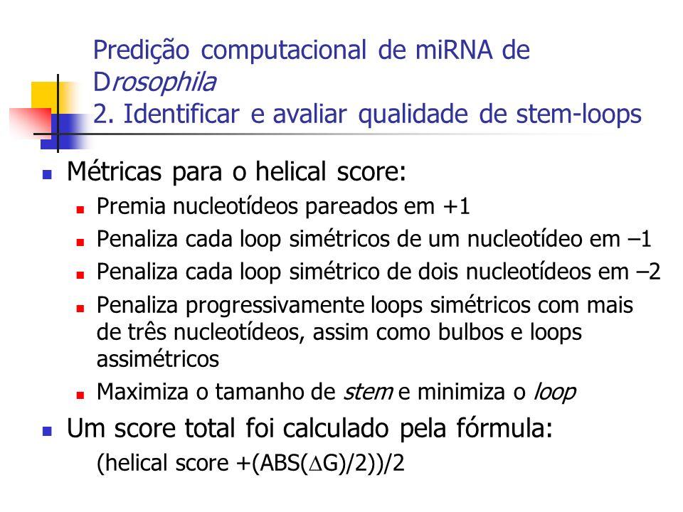 Predição computacional de miRNA de Drosophila 2. Identificar e avaliar qualidade de stem-loops Métricas para o helical score: Premia nucleotídeos pare
