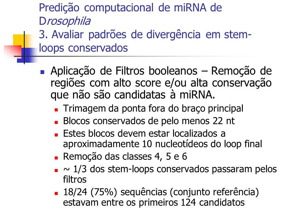 Aplicação de Filtros booleanos – Remoção de regiões com alto score e/ou alta conservação que não são candidatas à miRNA. Trimagem da ponta fora do bra