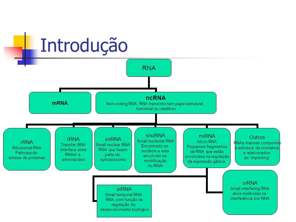 Caracterização biológica de miRNAs O que é um microRNA (miRNA).