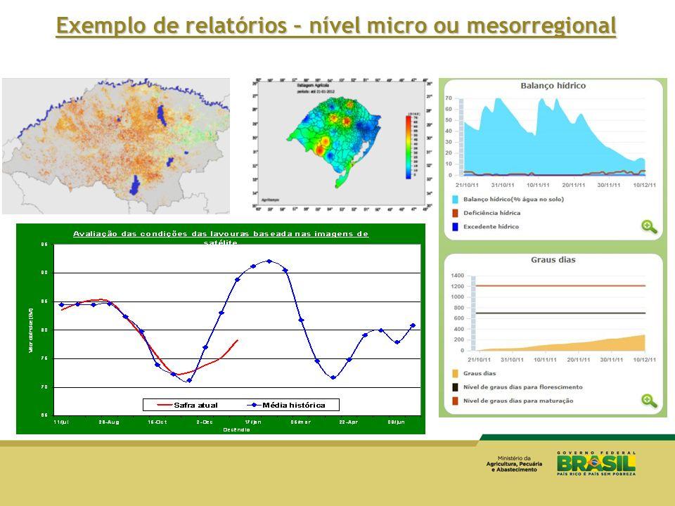 Exemplo de relatórios – nível micro ou mesorregional