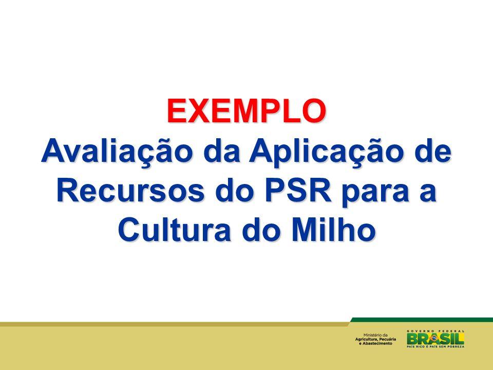 EXEMPLO Avaliação da Aplicação de Recursos do PSR para a Cultura do Milho