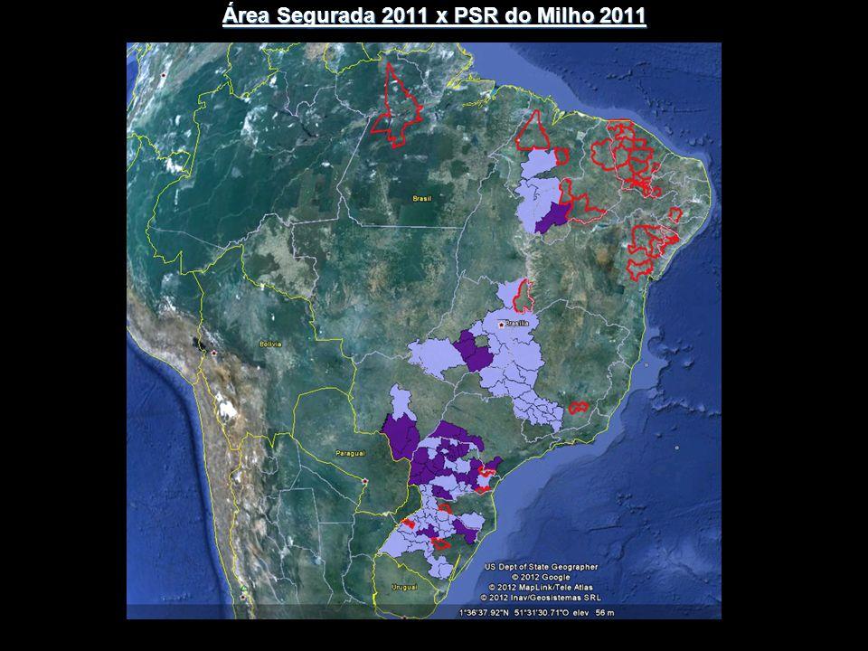 Área Segurada 2011 x PSR do Milho 2011