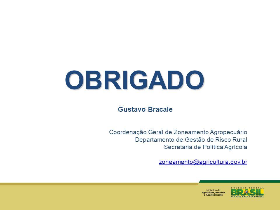 Gustavo Bracale Coordenação Geral de Zoneamento Agropecuário Departamento de Gestão de Risco Rural Secretaria de Política Agrícola zoneamento@agricult