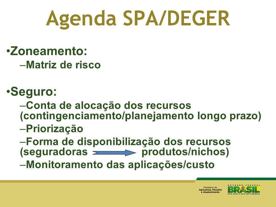 Agenda SPA/DEGER Zoneamento: –Matriz de risco Seguro: –Conta de alocação dos recursos (contingenciamento/planejamento longo prazo) –Priorização –Forma