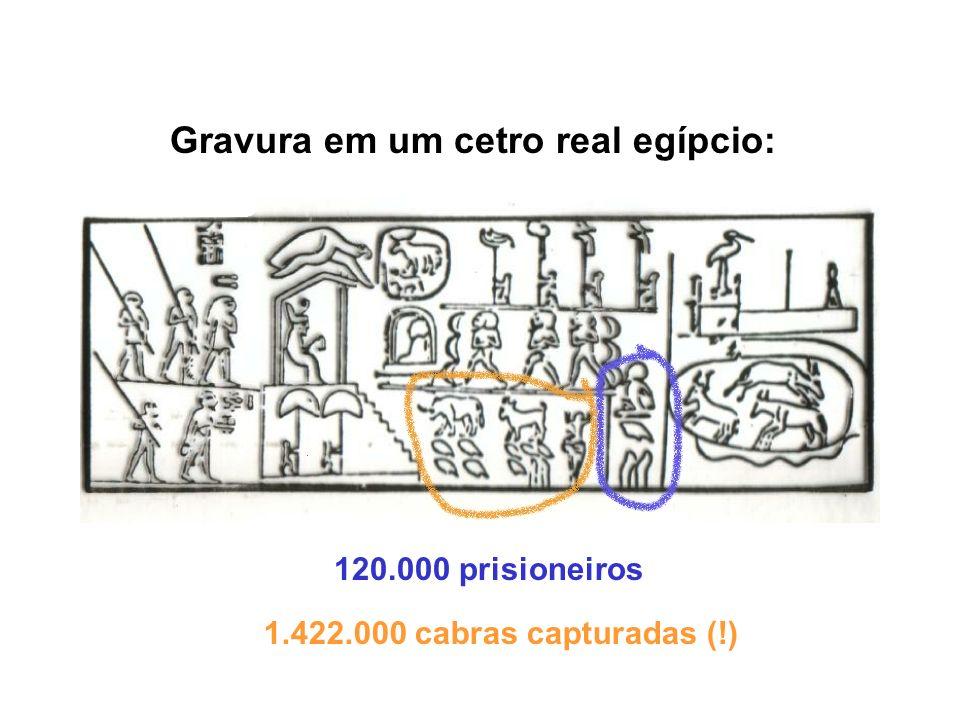 Gravura em um cetro real egípcio: 120.000 prisioneiros 1.422.000 cabras capturadas (!)