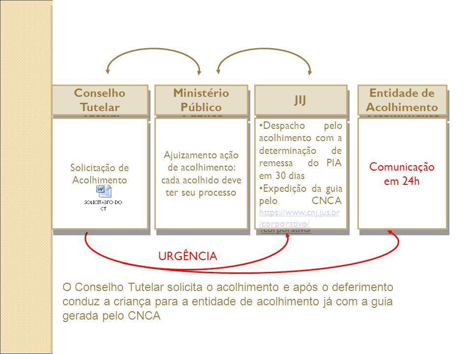 Conselho Tutelar Ministério Público JIJ Ajuizamento ação de acolhimento: cada acolhido deve ter seu processo Despacho pelo acolhimento com a determina