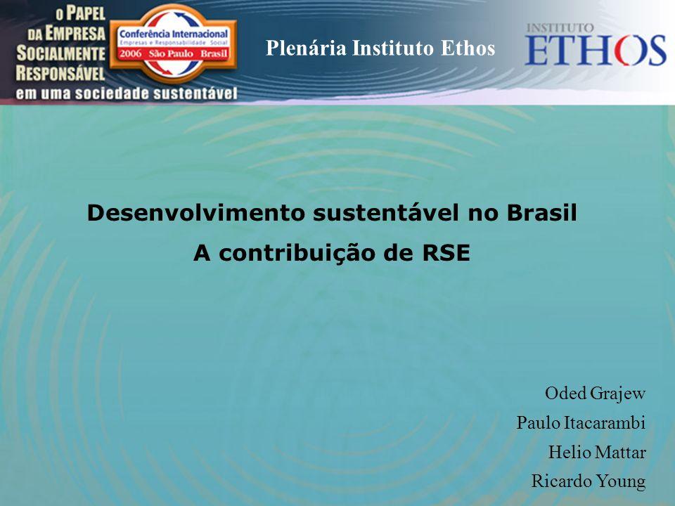 Desenvolvimento sustentável no Brasil A contribuição de RSE Oded Grajew Paulo Itacarambi Helio Mattar Ricardo Young Plenária Instituto Ethos