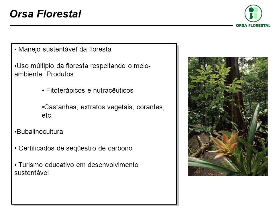 Orsa Florestal Manejo sustentável da floresta Uso múltiplo da floresta respeitando o meio- ambiente. Produtos: Fitoterápicos e nutracêuticos Castanhas