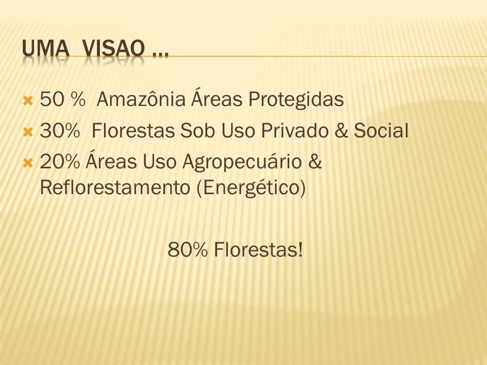 50 % Amazônia Áreas Protegidas 30% Florestas Sob Uso Privado & Social 20% Áreas Uso Agropecuário & Reflorestamento (Energético) 80% Florestas!