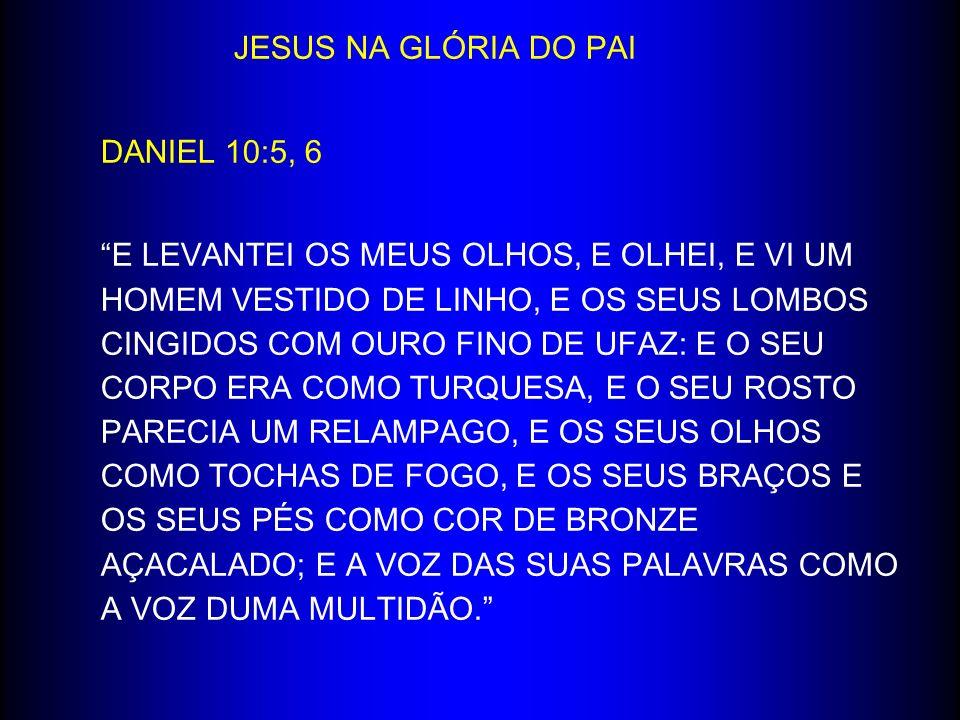 JESUS NA GLÓRIA DO PAI DANIEL 10:5, 6 E LEVANTEI OS MEUS OLHOS, E OLHEI, E VI UM HOMEM VESTIDO DE LINHO, E OS SEUS LOMBOS CINGIDOS COM OURO FINO DE UF