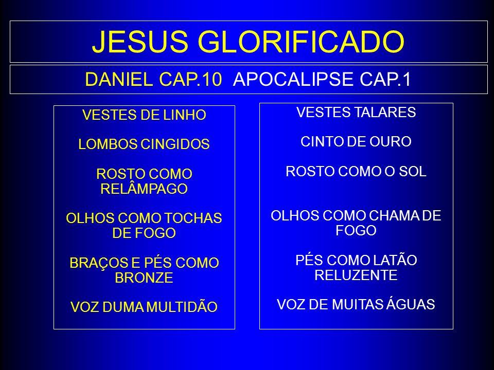 DANIEL CAP.10APOCALIPSE CAP.1 VESTES TALARES CINTO DE OURO ROSTO COMO O SOL OLHOS COMO CHAMA DE FOGO PÉS COMO LATÃO RELUZENTE VOZ DE MUITAS ÁGUAS VEST