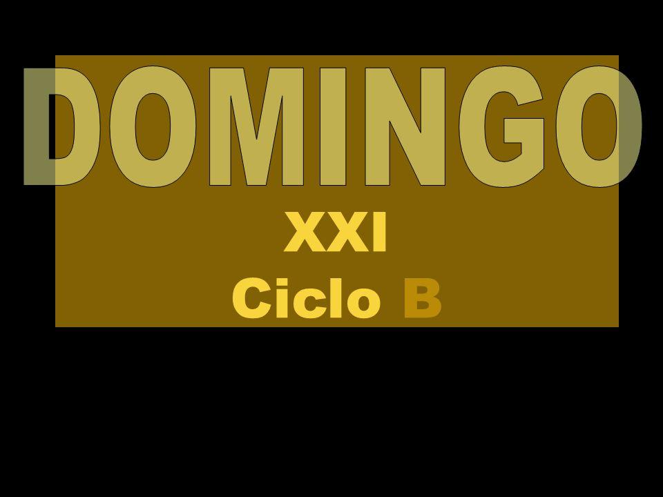 XXI Ciclo B