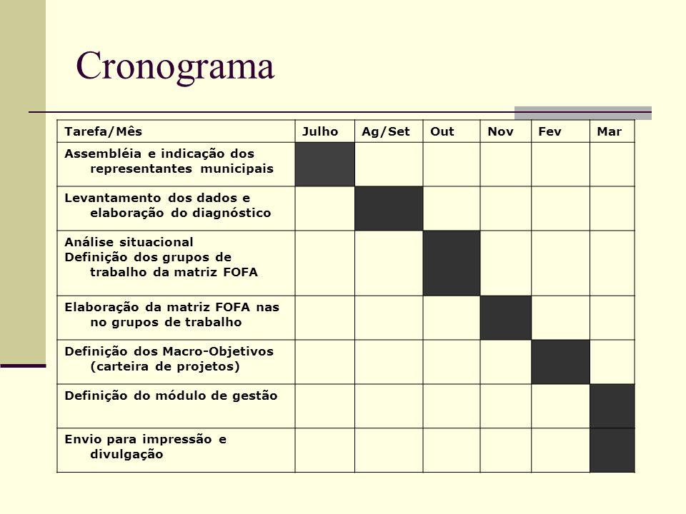 Cronograma Tarefa/MêsJulhoAg/SetOutNovFevMar Assembléia e indicação dos representantes municipais Levantamento dos dados e elaboração do diagnóstico A
