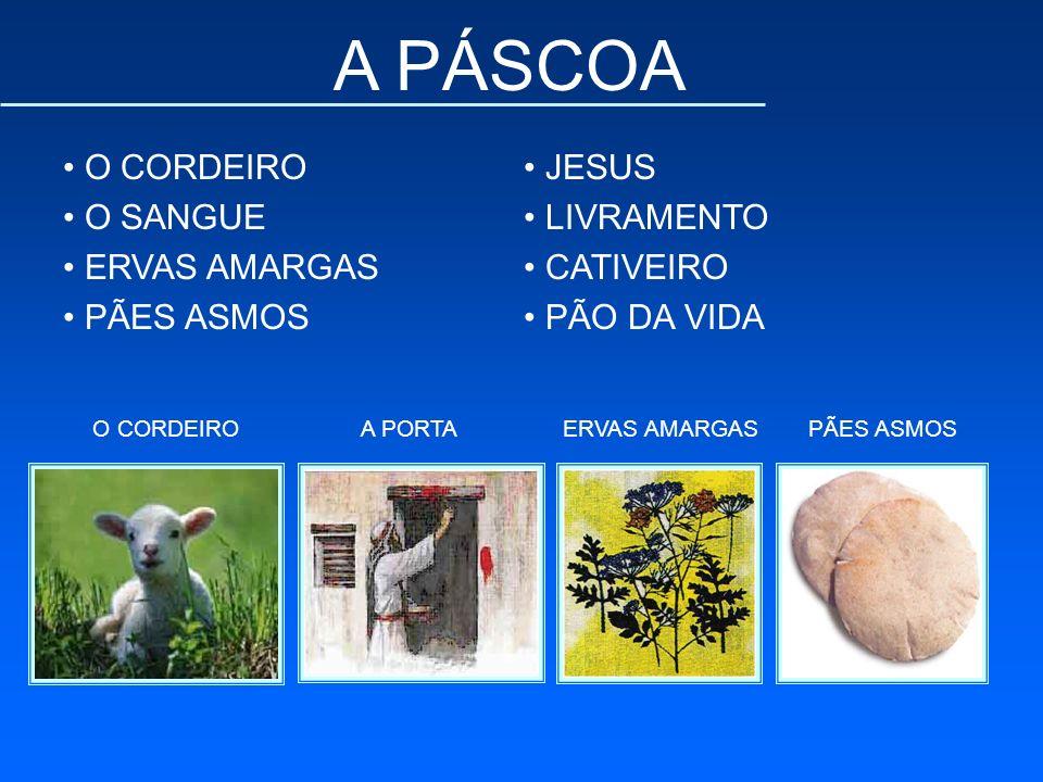 A PÁSCOA O CORDEIRO O SANGUE ERVAS AMARGAS PÃES ASMOS JESUS LIVRAMENTO CATIVEIRO PÃO DA VIDA O CORDEIROA PORTAERVAS AMARGASPÃES ASMOS