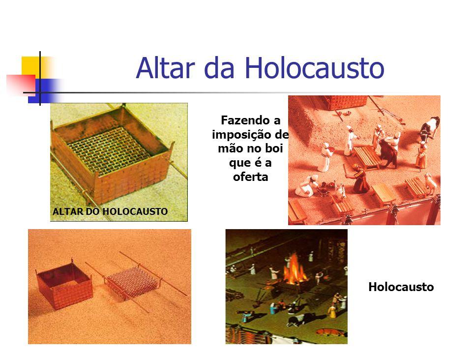Altar da Holocausto ALTAR DO HOLOCAUSTO Fazendo a imposição de mão no boi que é a oferta Holocausto