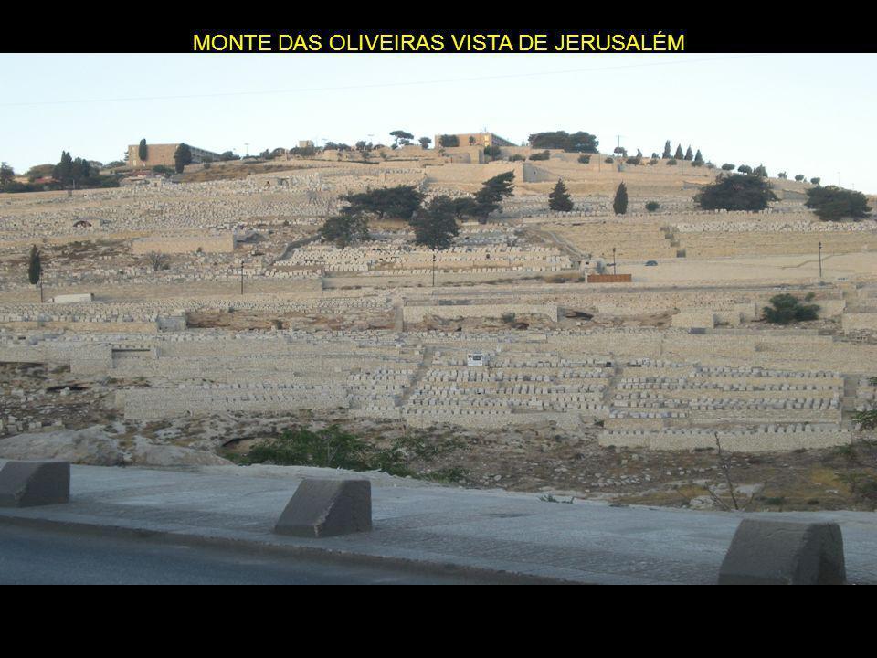 MONTE DAS OLIVEIRAS VISTA DE JERUSALÉM