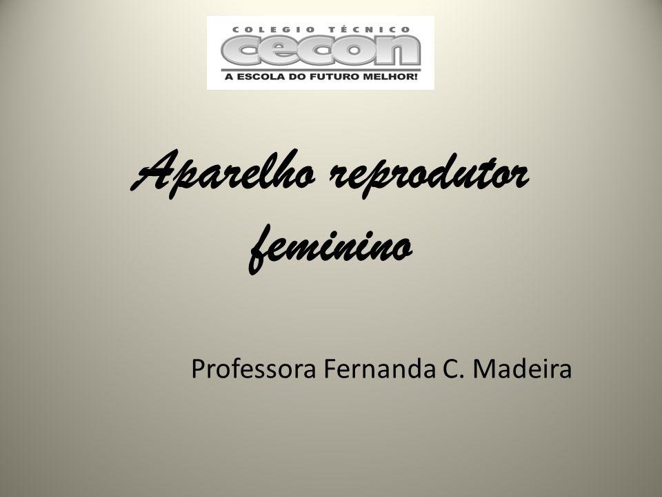 Aparelho reprodutor feminino Professora Fernanda C. Madeira