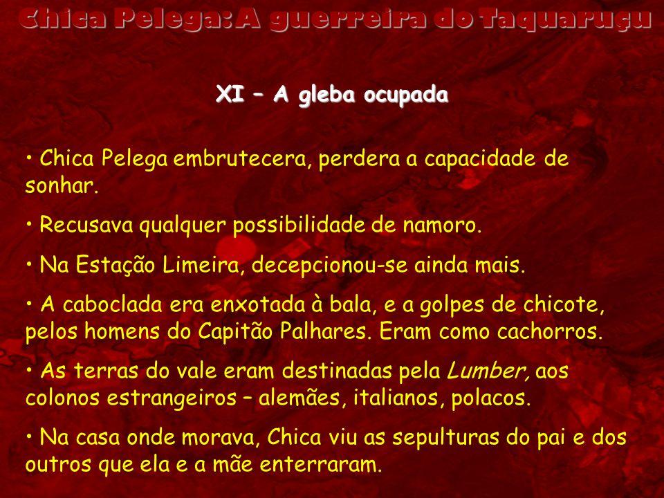 Chica Pelega: A guerreira do Taquaruçu XI – A gleba ocupada Chica Pelega embrutecera, perdera a capacidade de sonhar. Recusava qualquer possibilidade