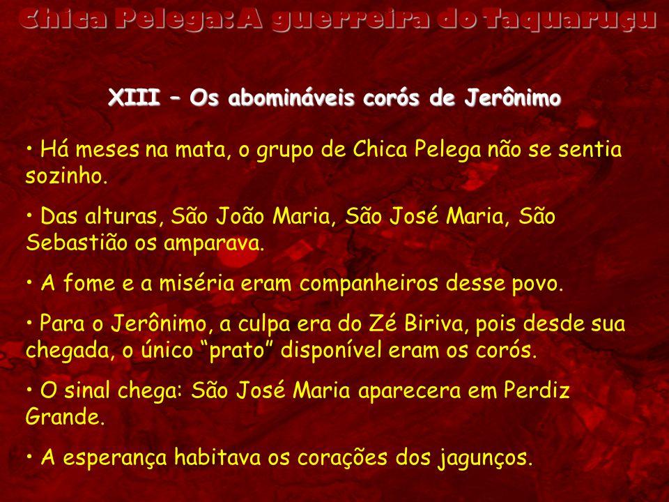 Chica Pelega: A guerreira do Taquaruçu XIII – Os abomináveis corós de Jerônimo Há meses na mata, o grupo de Chica Pelega não se sentia sozinho. Das al