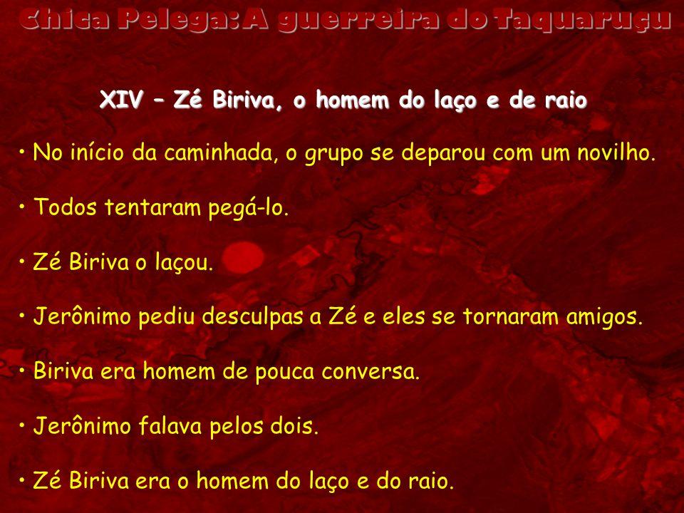 Chica Pelega: A guerreira do Taquaruçu XIV – Zé Biriva, o homem do laço e de raio No início da caminhada, o grupo se deparou com um novilho. Todos ten