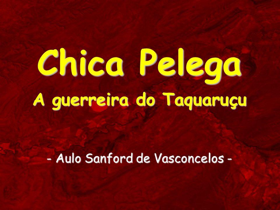 Chica Pelega A guerreira do Taquaruçu - Aulo Sanford de Vasconcelos -