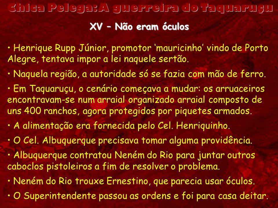 Chica Pelega: A guerreira do Taquaruçu XV – Não eram óculos Henrique Rupp Júnior, promotor mauricinho vindo de Porto Alegre, tentava impor a lei naque