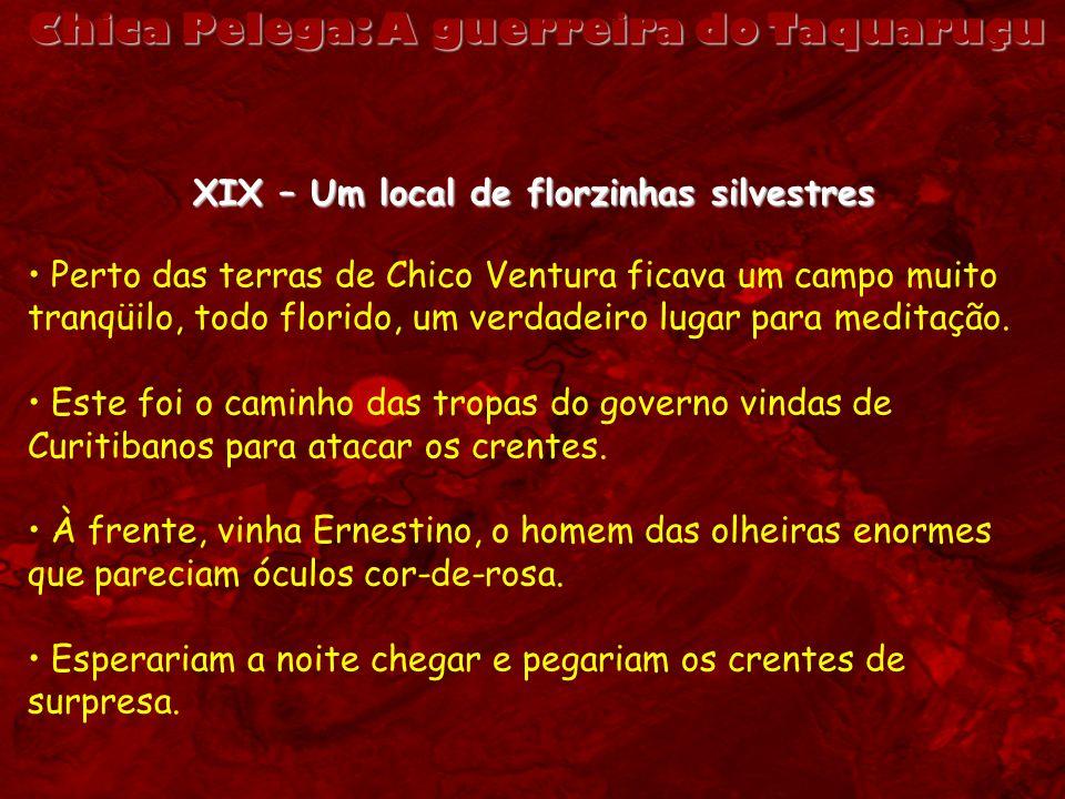Chica Pelega: A guerreira do Taquaruçu XIX – Um local de florzinhas silvestres Perto das terras de Chico Ventura ficava um campo muito tranqüilo, todo